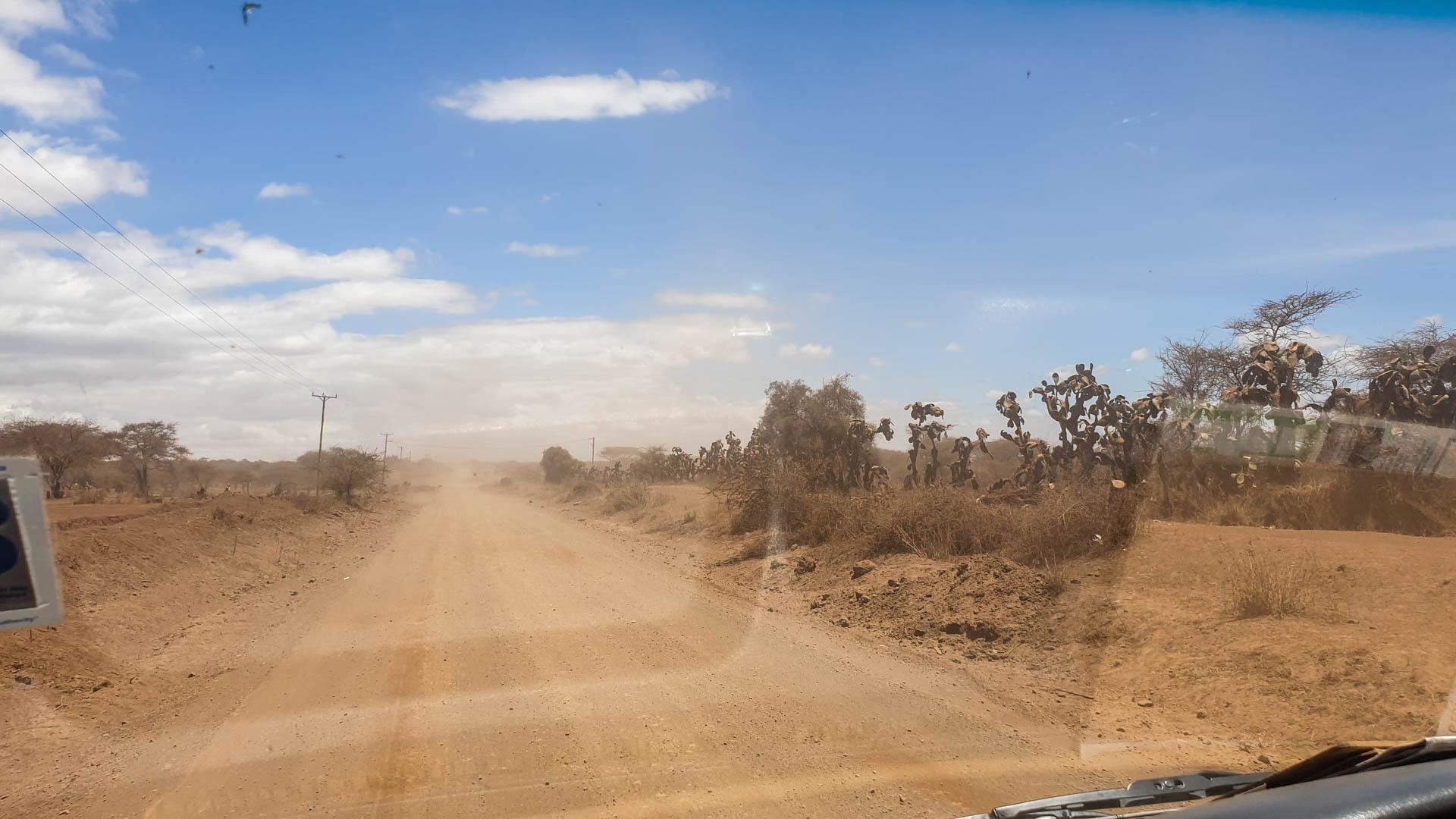 Carretera de cabras llegando a Amboseli, Kenia