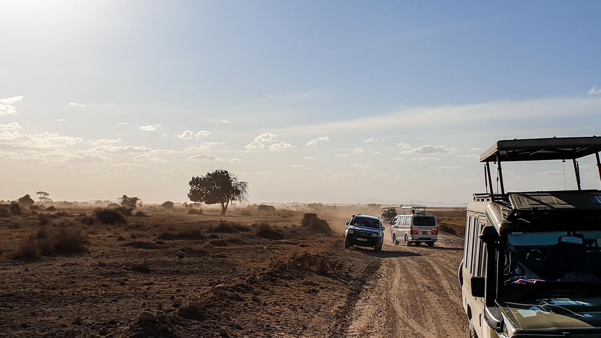 Entramos en el Parque Nacional de Amboseli, Kenia