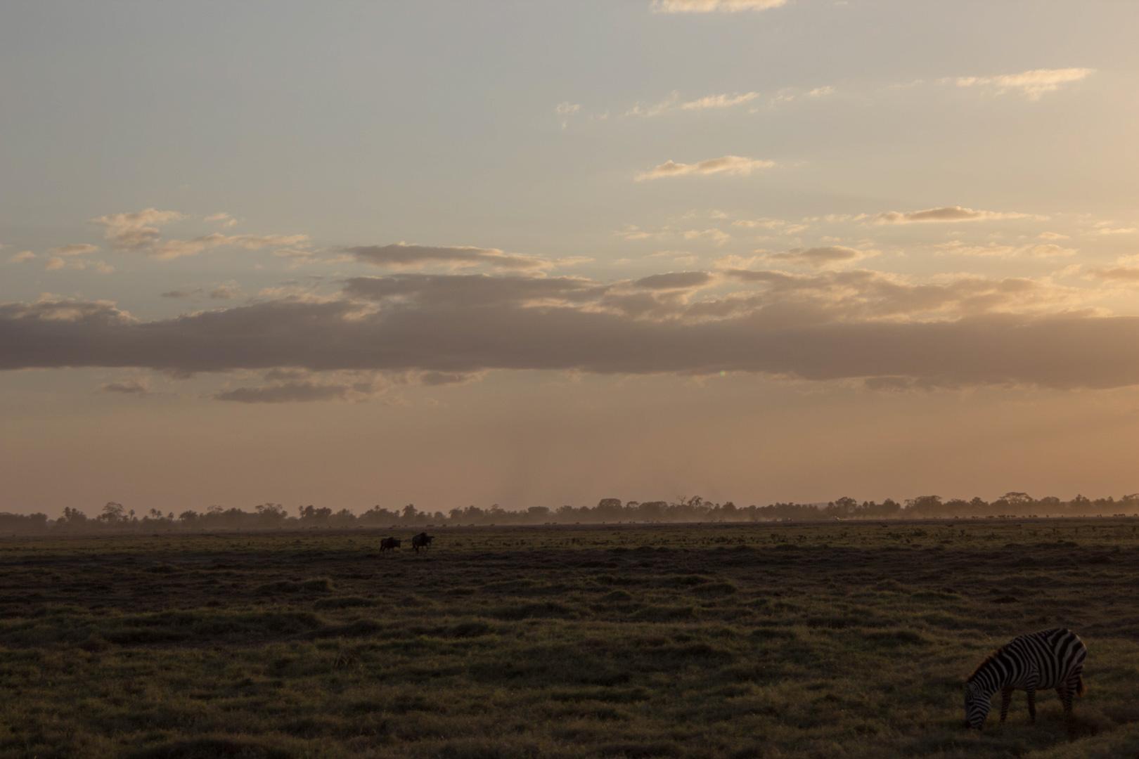 Atardecer en Parque Nacional de Amboseli, Kenia