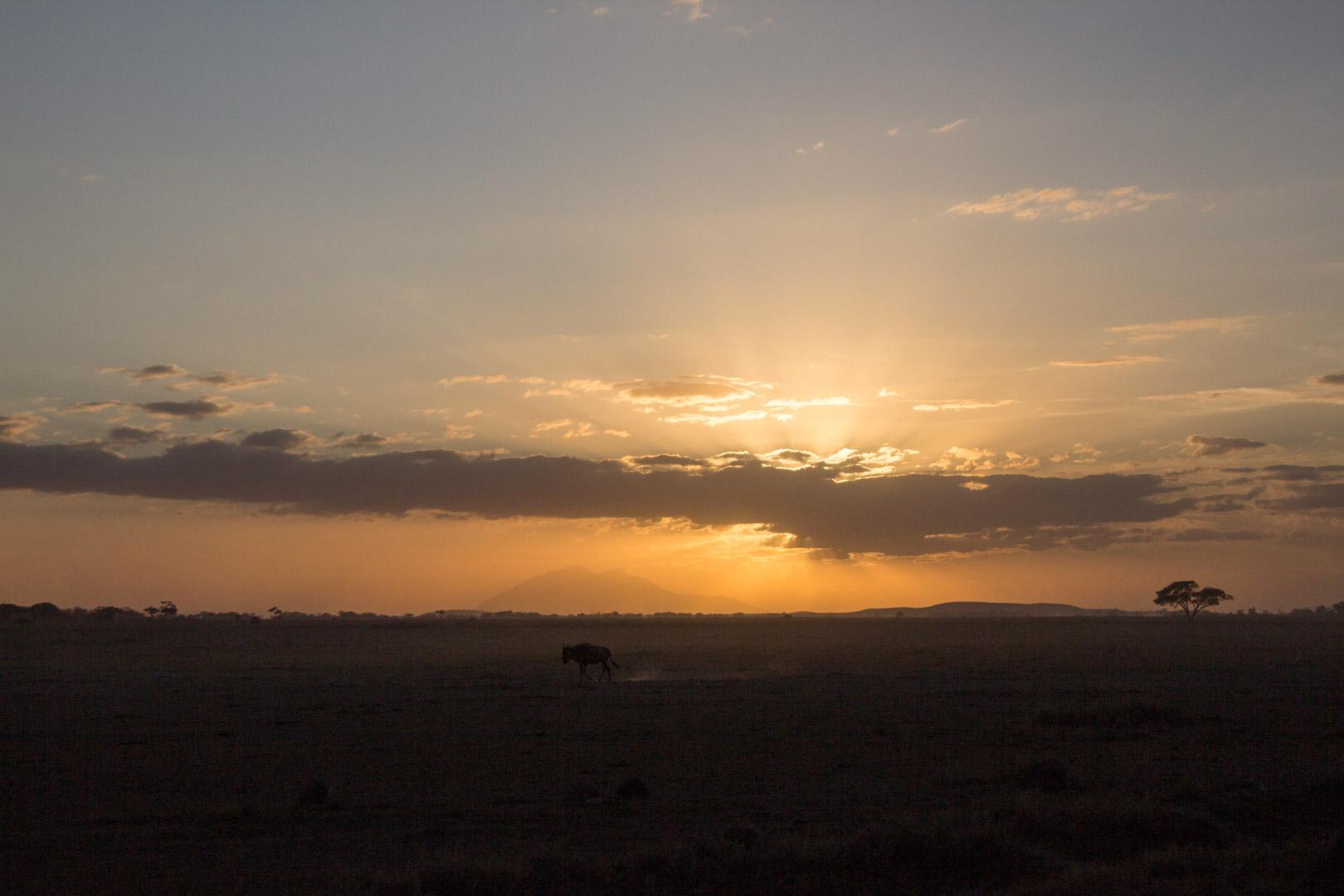 Puesta de sol, Parque Nacional de Amboseli, Kenia