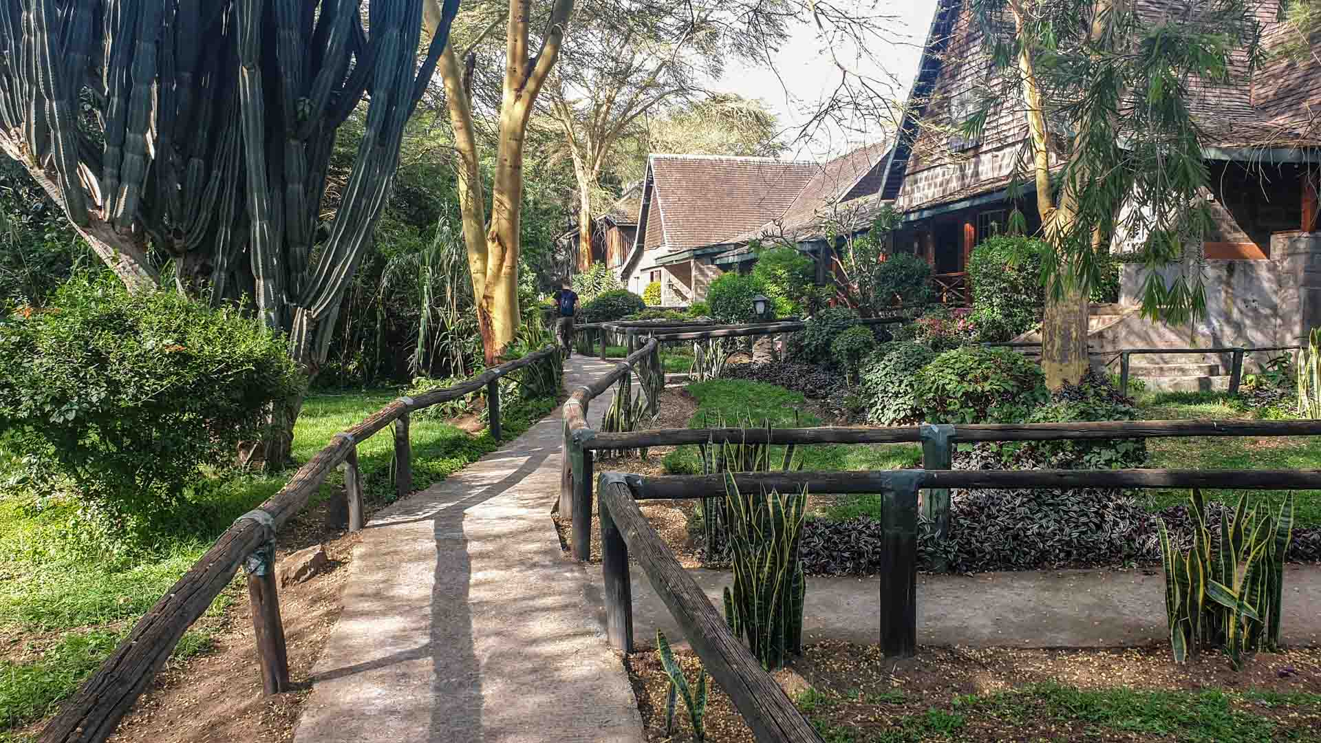 Bungalows en Lake Nakuru Lodge