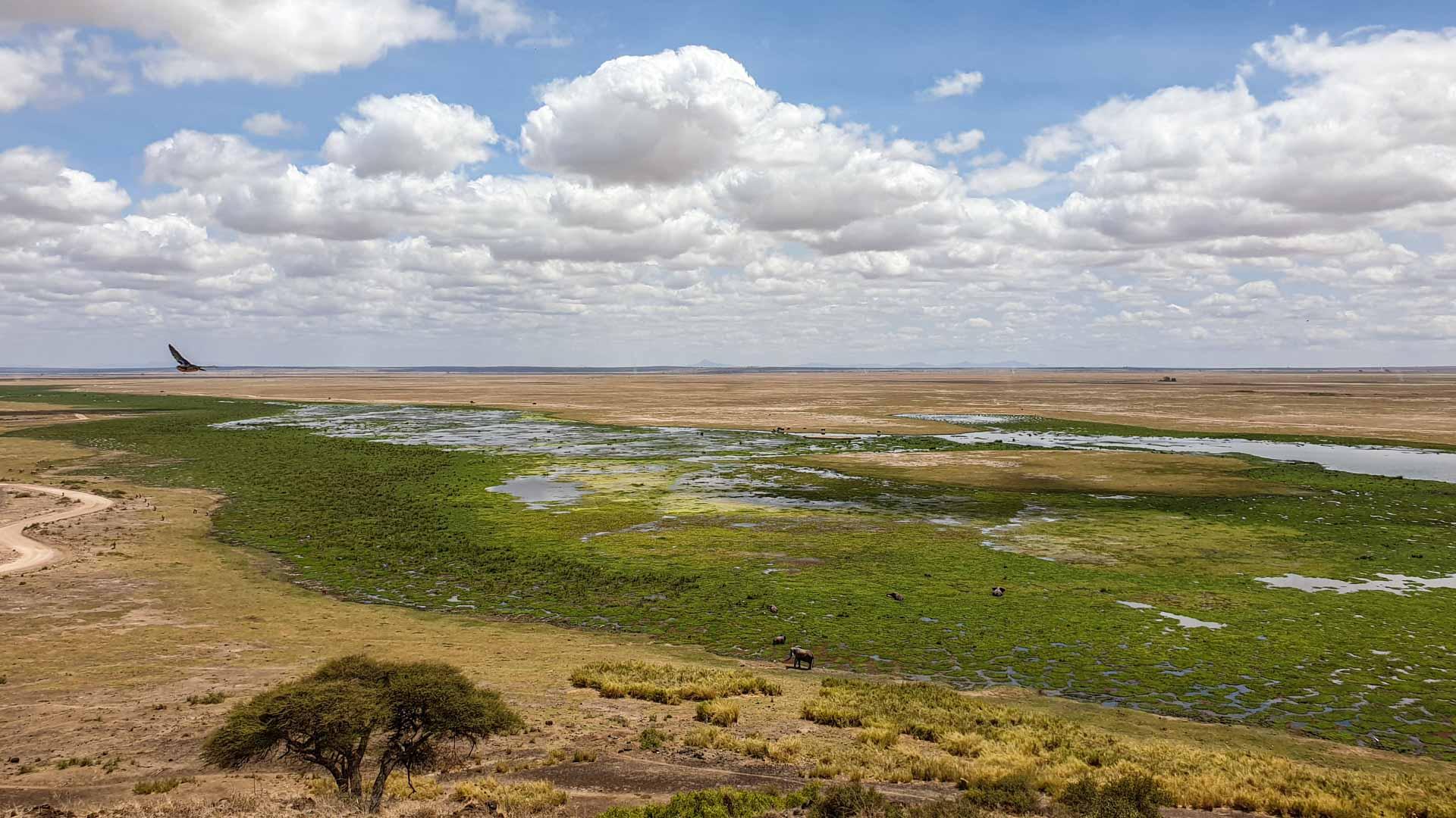 Vistas de Amboseli desde Noomotio, Kenia