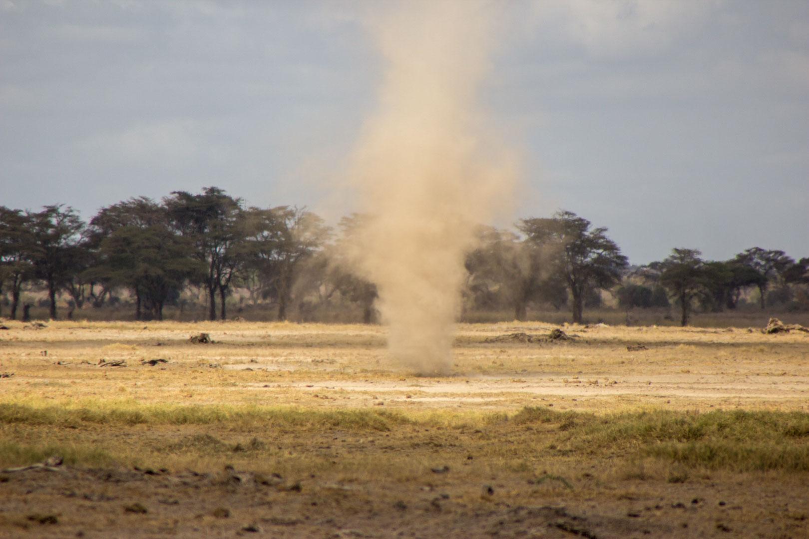 Tornado de arena en Parque Nacional de Amboseli, Kenia