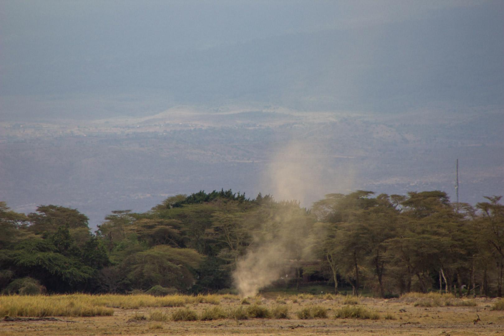 Pequeño remolino de arena en Parque Nacional de Amboseli, Kenia