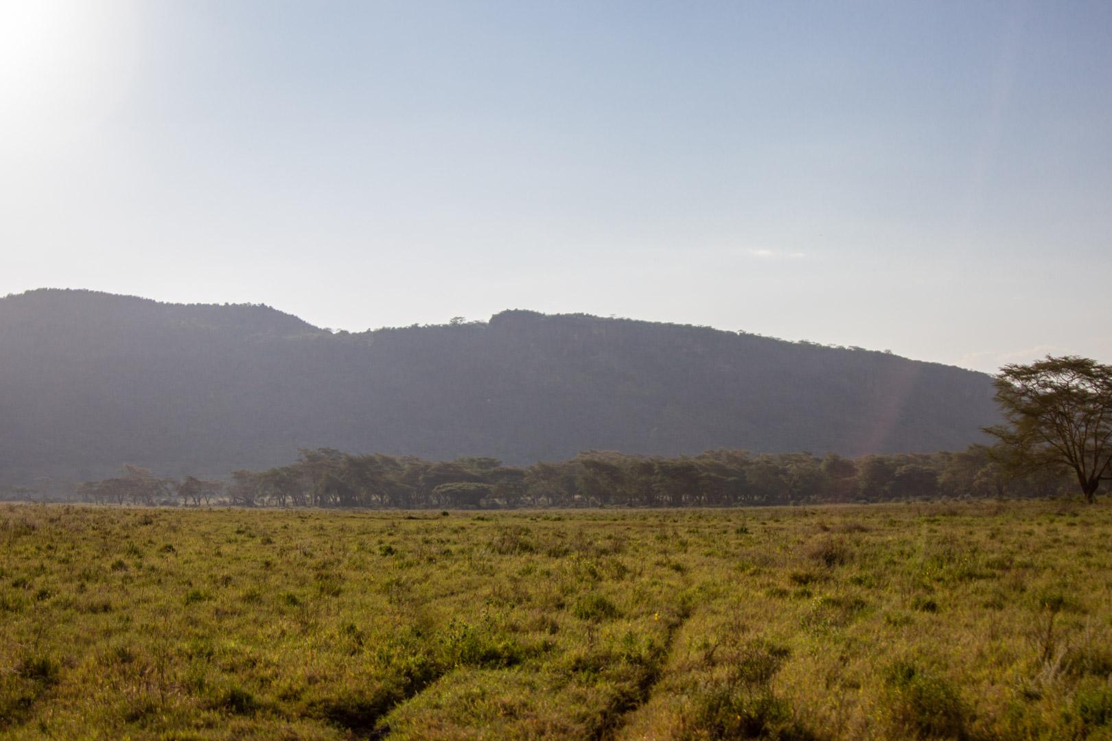 Parque Natural Lago Nakuru, Kenia