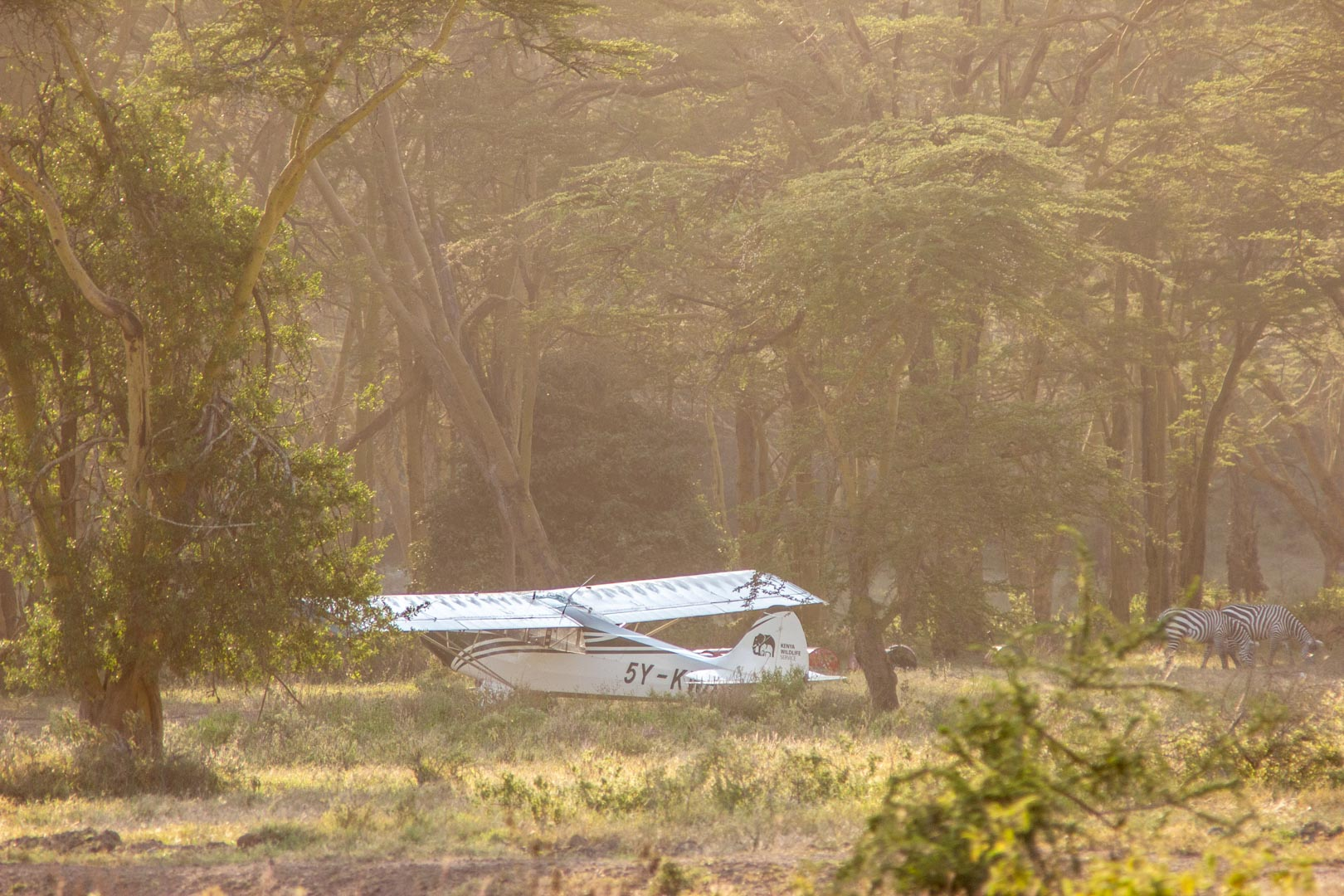 Avioneta en Parque Nacional Lago Nakuru, Kenia