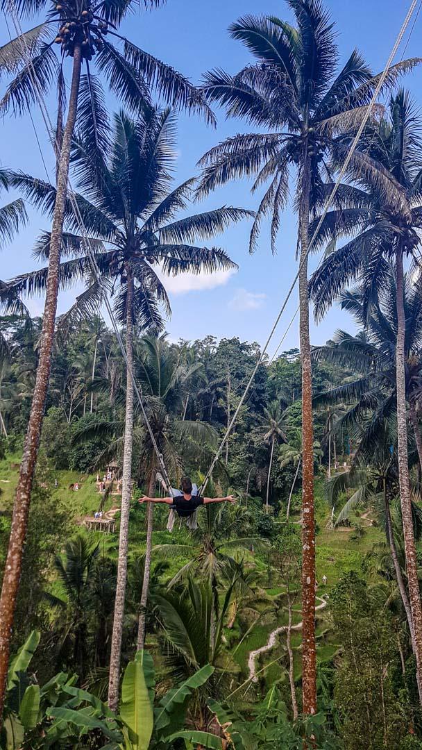 Beni sobrevolando Tegalalang muy rápido, Bali, Indonesia