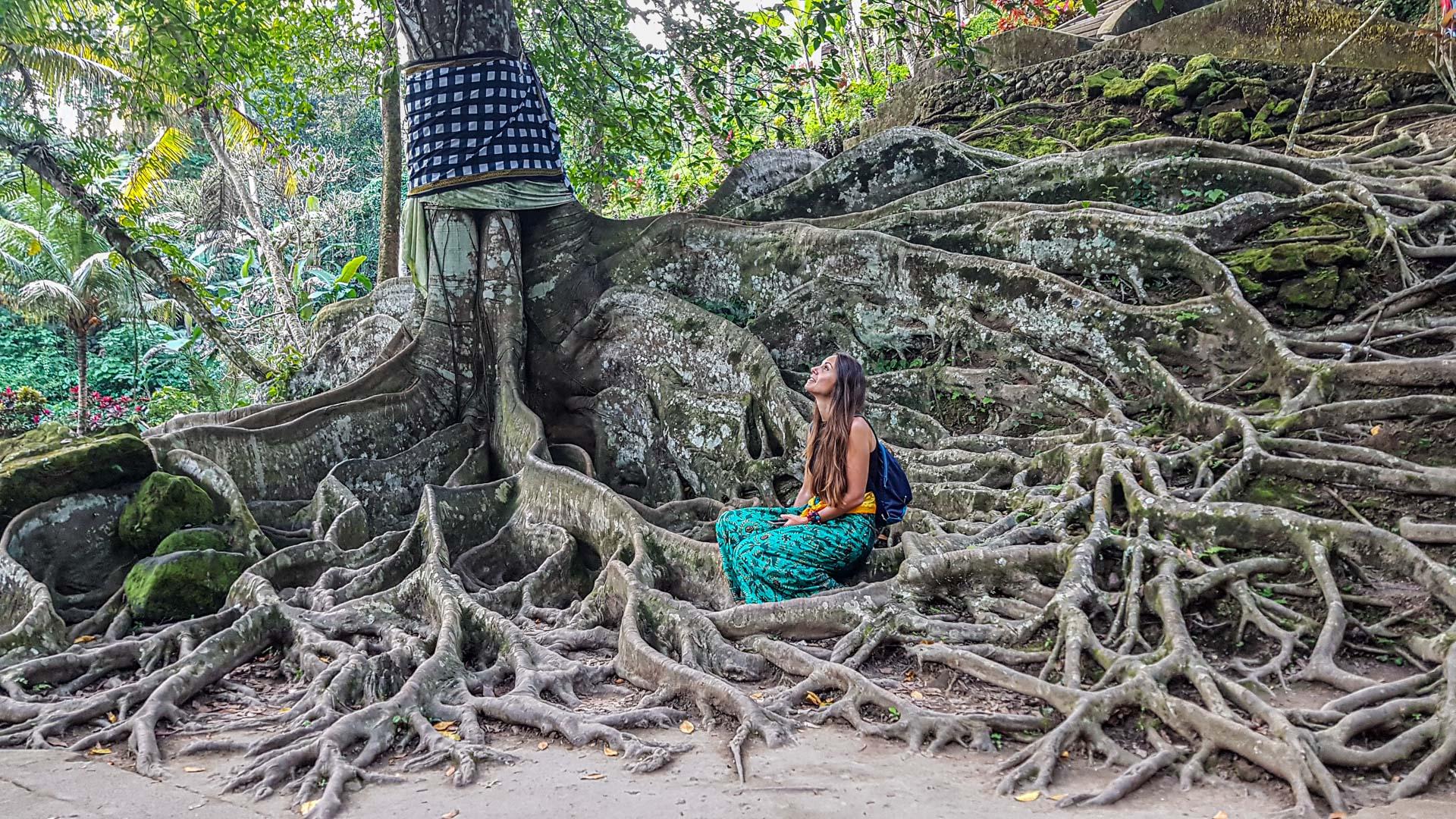 Árbol milenario en Pura Goa Gajah, Bali, Indonesia