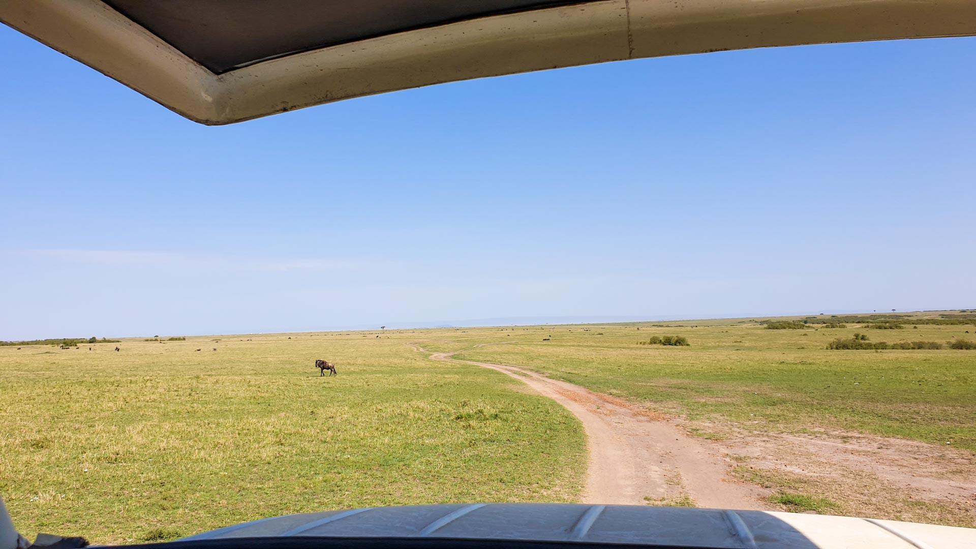 Entramos en el Masai Mara, Kenia