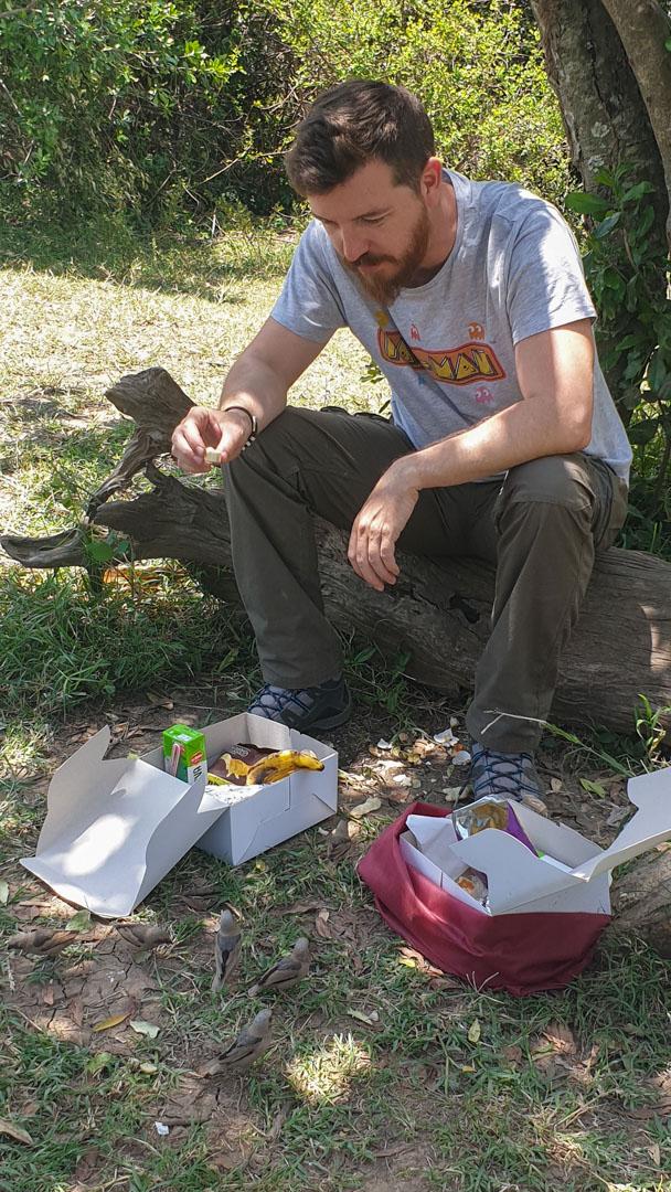 Pájaros comiéndose nuestro picnic en Masai Mara, Kenia
