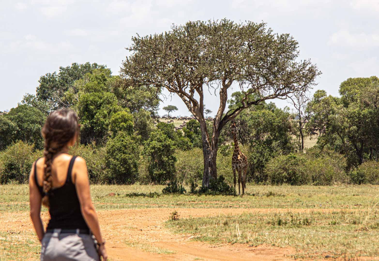 Primer animal que veía encontrándome fuera de la minivan, Masai Mara, Kenia