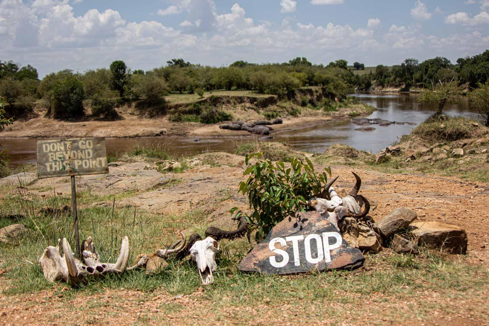 """Carteles de """"stop"""" y """"prohibido el paso"""" por presencia de hipopótamos en el río Mara, Masai Mara, Kenia"""