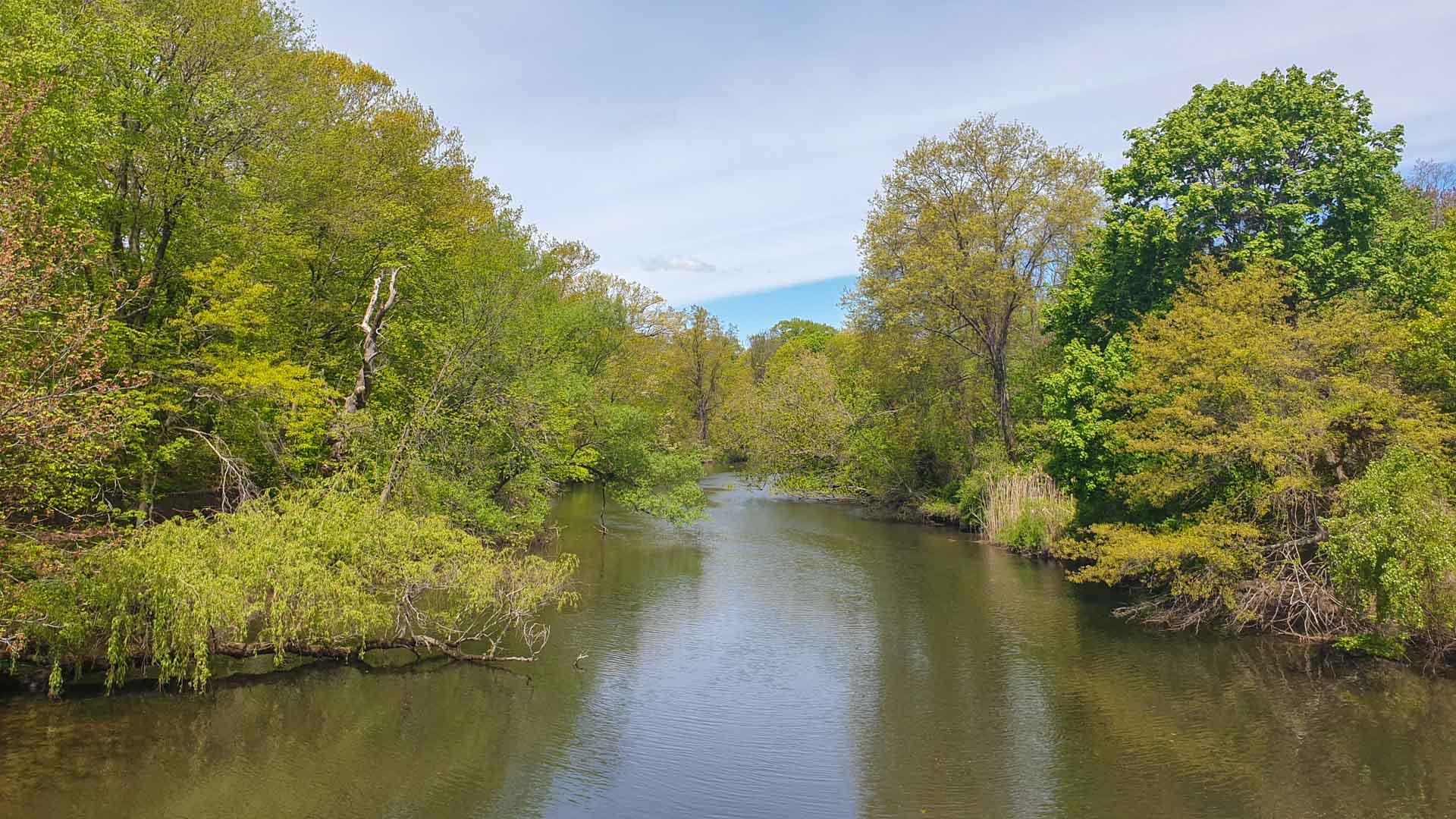 Vistas del Río Mill, East Rock Park, New Haven, Connecticut