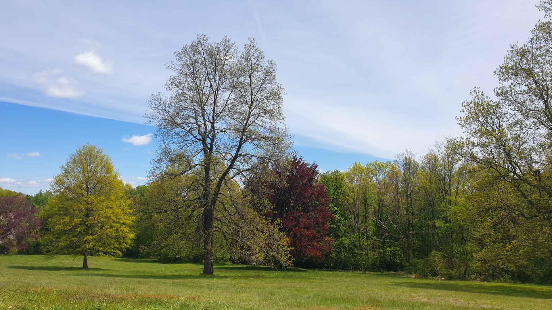 Paisajes en East Rock Park, New Haven, Connecticut