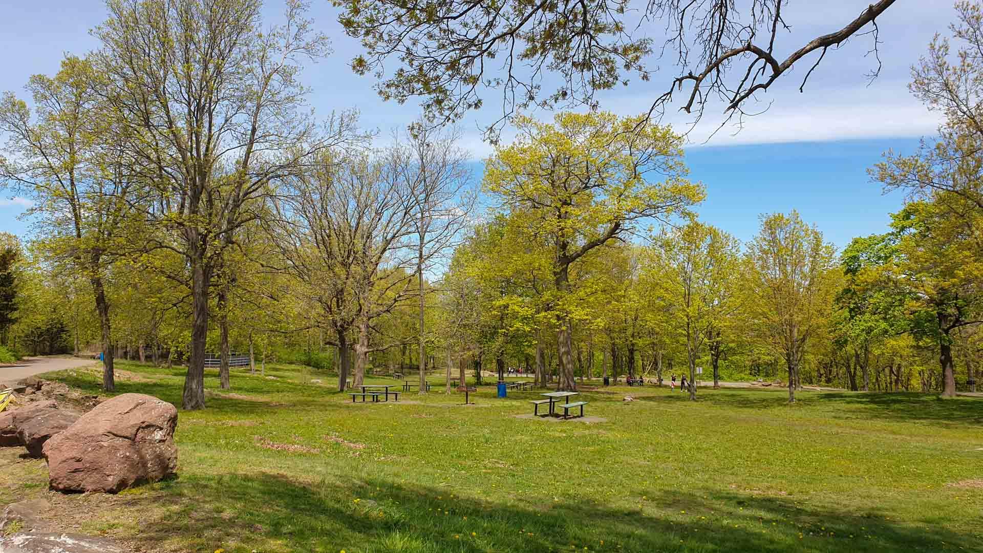 Zona de picnic y barbacoas en East Rock Park, New Haven, Connecticut