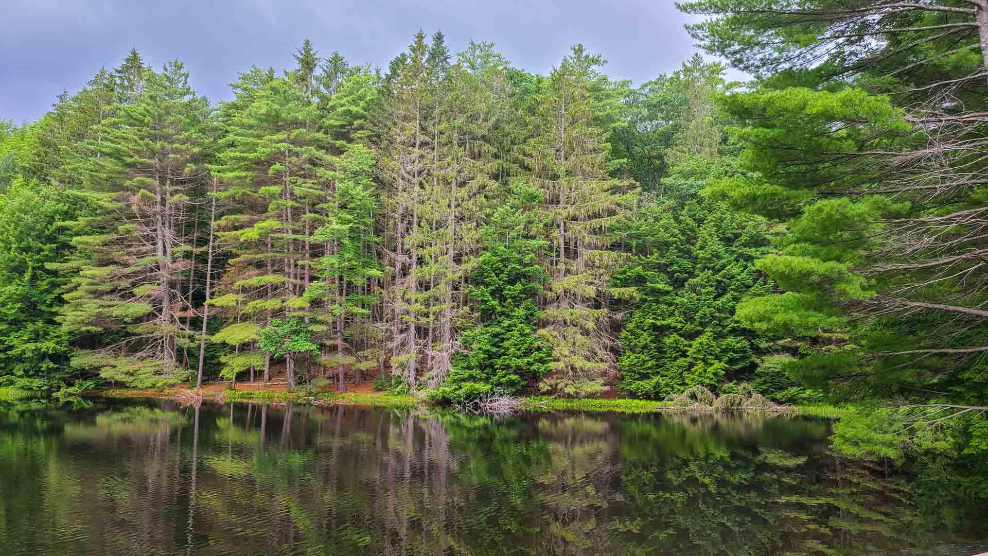 Lago en Corinth Reservoir Recreation Area, Adirondack, Nueva York