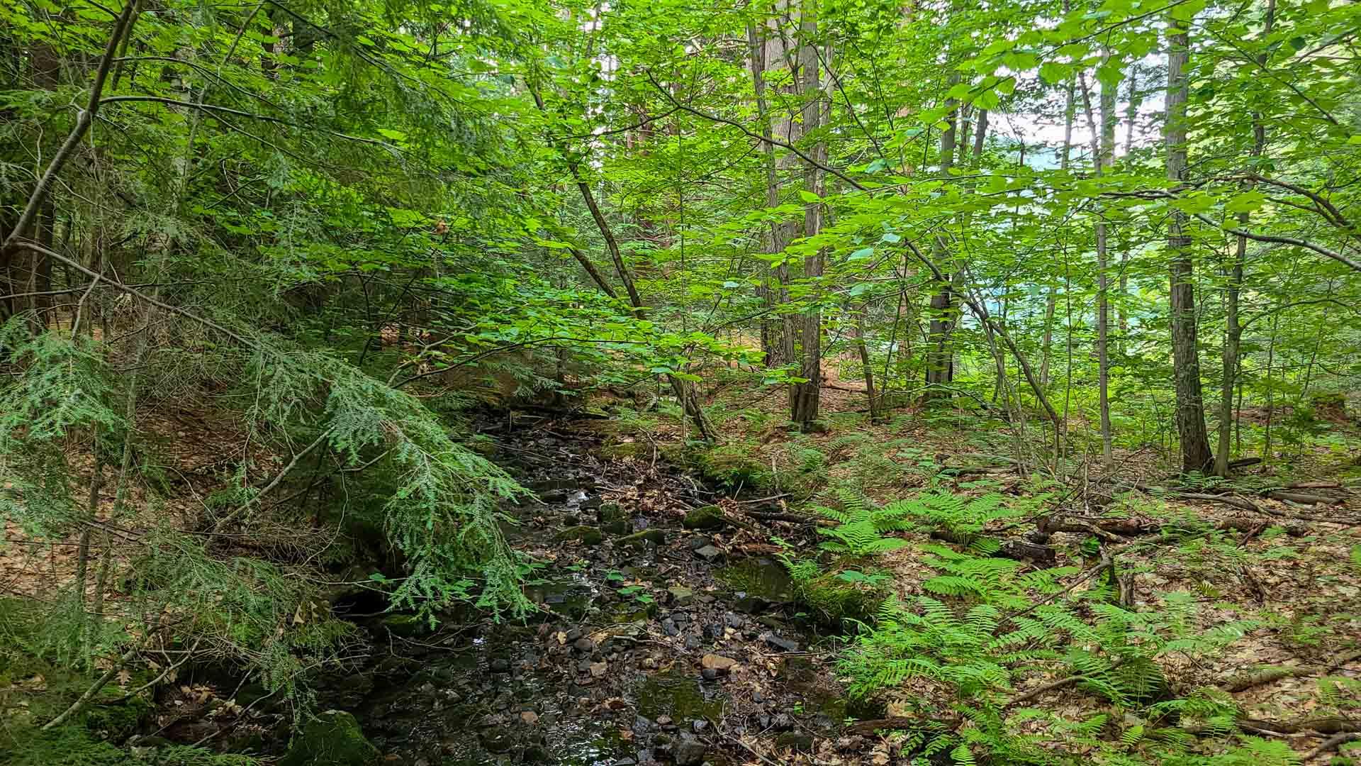 Corinth Reservoir Recreation Area, Adirondack, Nueva York