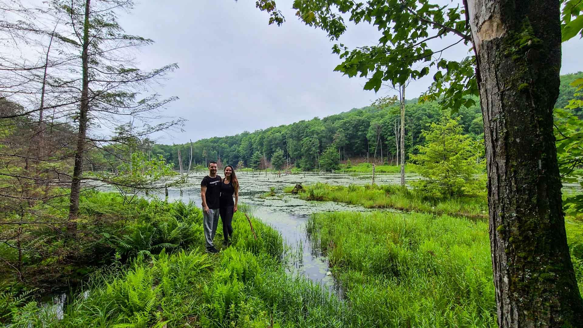 Lago de nenúfares, Corinth Reservoir Recreation Area, Adirondack, Nueva York