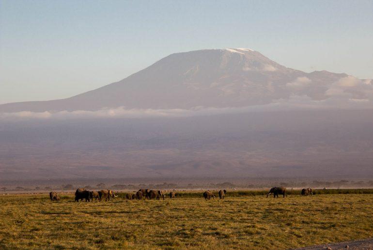 Kilimanjaro, Amboseli, Kenia