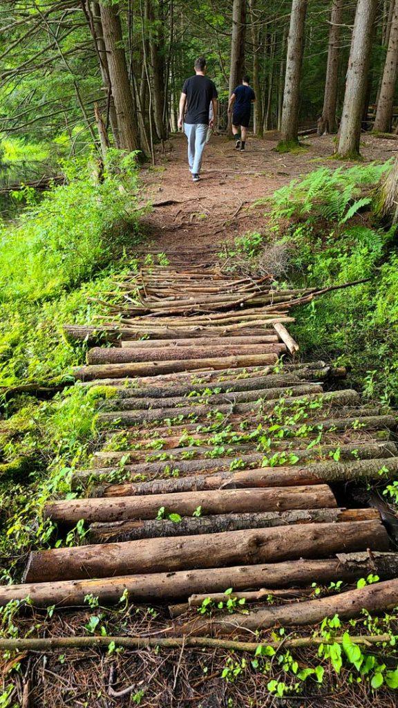 Camino para cruzar un río en Corinth Reservoir Recreation Area, Adirondack, Nueva York