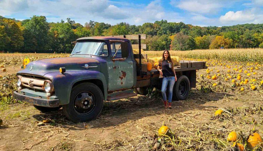 Laberinto de maíz y huerto de calabazas en Connecticut